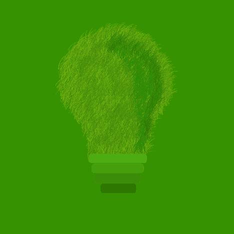 ekologiczne miejsce pracy